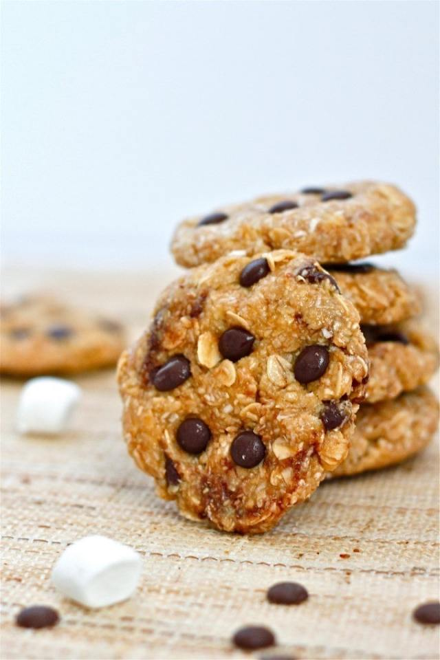 no_Bake_protein_cookies3