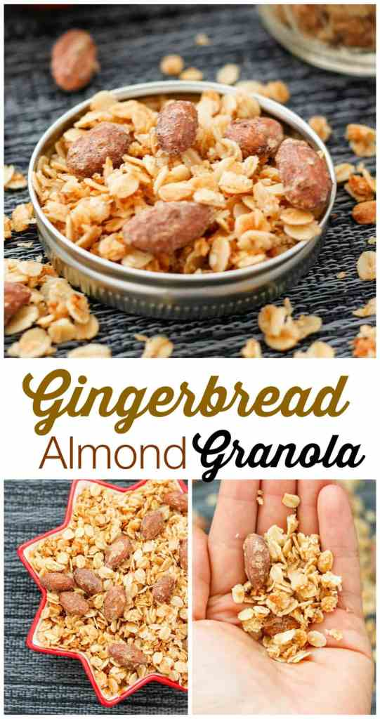 gingerbread-almond-granola8