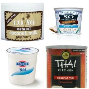 yogurts- Vegan, gluten free, paleo and dairy free options! - thebigmansworld.com