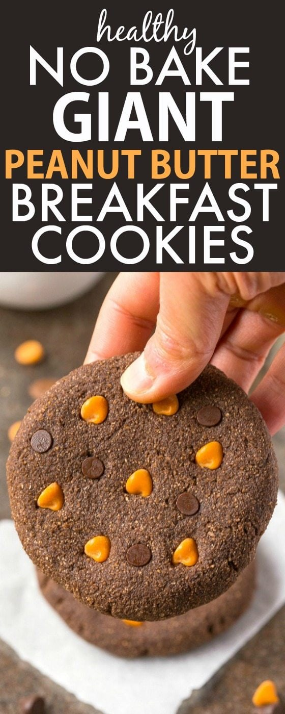 Healthy No Bake GIANT JUMBO Peanut Butter Breakfast Cookies- It's just like a peanut butter cup in healthy breakfast form- Simple, easy and made with NO sugar, butter, grains (oatmeal option!), or flour! {vegan, gluten free, grain free recipe}- thebigmansworld.com
