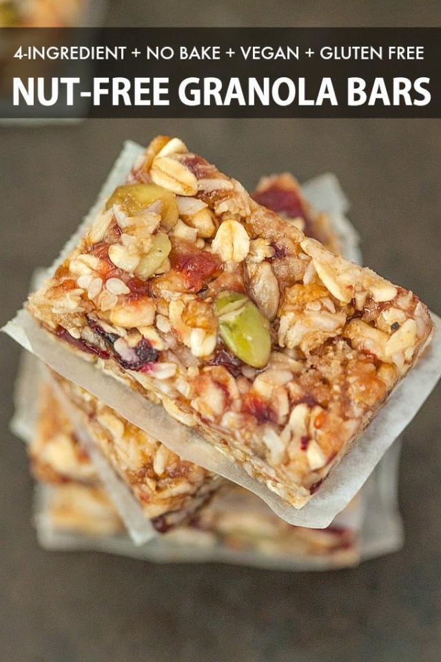 homemade vegan no bake granola bars topped with dried fruit