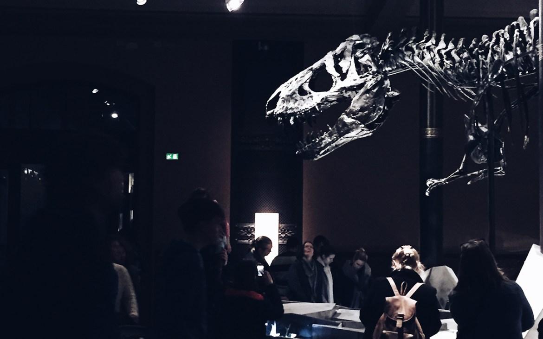 Rex Tyrannosaurus Skelett Naturkundemuseum Berlin