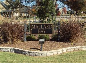 Mallard Bay, Farragut, TN