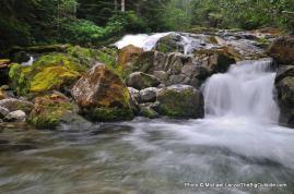 Cataract Creek.