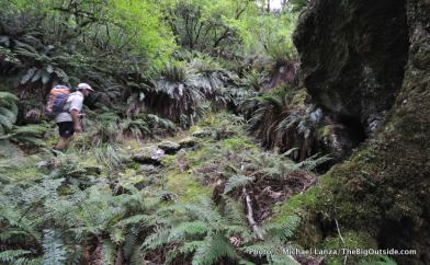 Rees Valley, Rees-Dart Track.