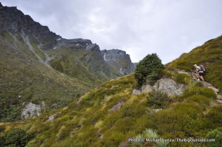 Upper Rees Valley, Rees-Dart Track.