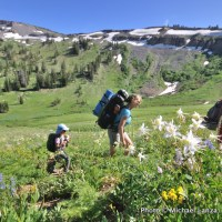 Columbine and hikers, Death Canyon