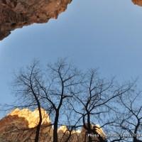 Spring Canyon.