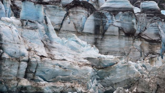 Back to the Ice Age: Sea Kayaking Glacier Bay