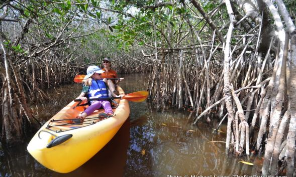 Like No Other Place: Paddling the Everglades
