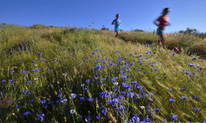 Wild Back Yard: Trails of the Boise Foothills
