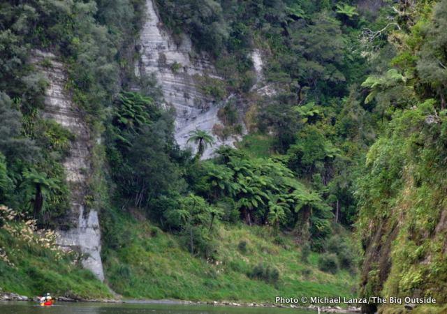 Whanganui River below Whakahoro, Whanganui River Journey, Whanganui National Park.