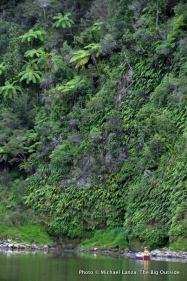 Whanganui River.