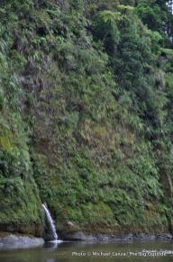 Lower Whanganui River, nearing Pipiriki takout.