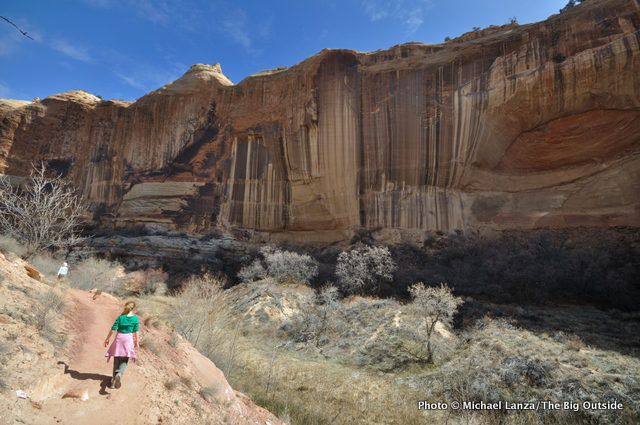 Hikers on the Lower Calf Creek Falls Trail.