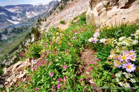 North Fork Cascade Canyon, Grand Teton National Park, WY.