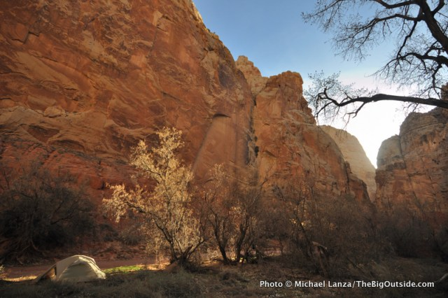 Spring Canyon, Capitol Reef National Park.
