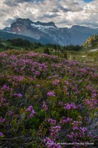 Above Lyman Lake, Glacier Peak Wilderness, Washington.