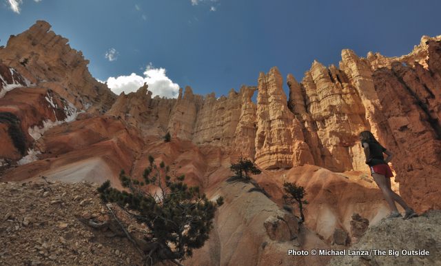 Wall of Windows, Peek-a-Boo loop, Bryce Canyon National Park.
