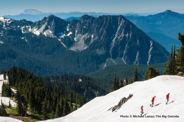 Near the Skyline Trail, Paradise, at Mount Rainier N.P.