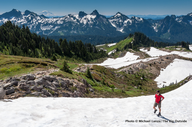 Skyline Trail, Paradise, at Mount Rainier N.P.
