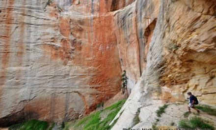 Ask Me: The Best Backpacking Trip in Zion National Park