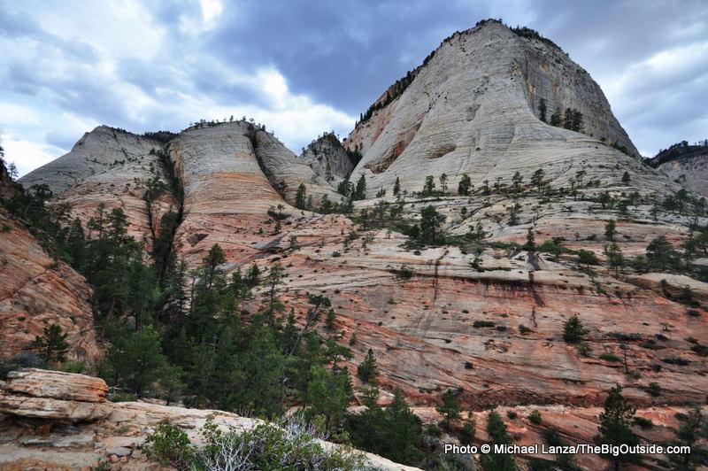 Along the West Rim Trail, Zion National Park.