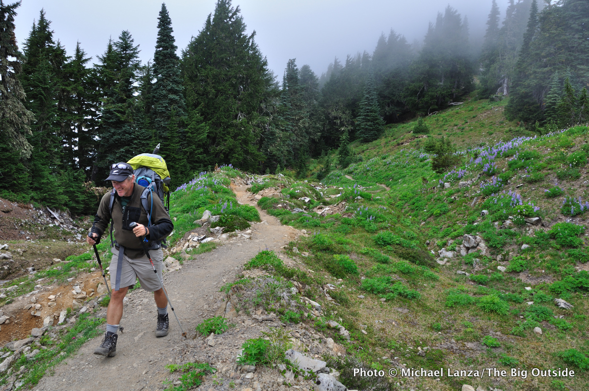 High Divide Trail in fog, Olympic National Park.