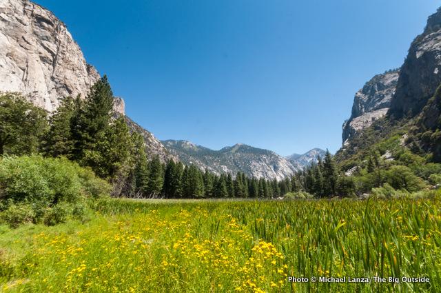 Zumwalt Meadow, Kings Canyon.