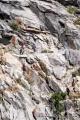 High Sierra Trail to Precipice Lake.