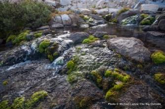 Outlet creek of Precipice Lake.