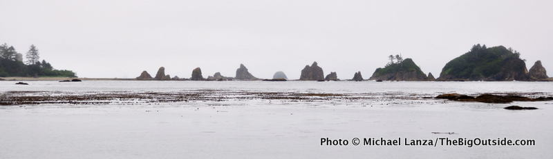 The view from Strawberry Point on the coast of Olympic National Park.