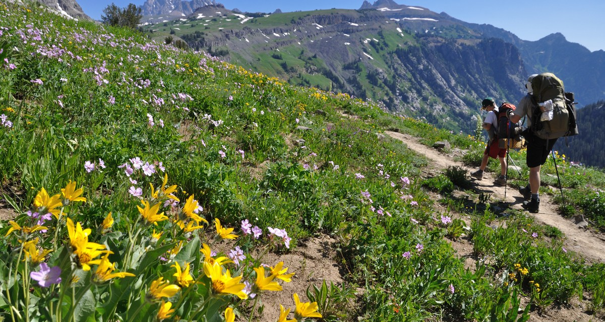 Ask Me: Backpacking the Teton Crest Trail