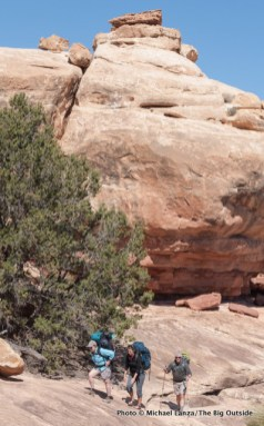 Big Spring Canyon, Needles District, Canyonlands National Park.