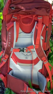 Osprey Ace 38 harness