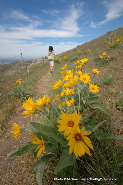 My daughter hiking in the Boise Foothills.