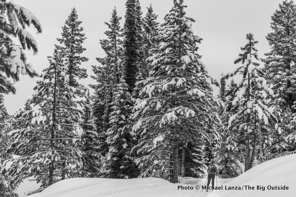 Ski touring the Elkhorn Loop, Boise National Forest, Idaho.