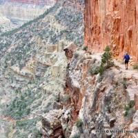 North Kaibab Trail, Grand Canyon National Park.
