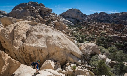 Facing the Biggest Challenge: Friendship and Climbing in Joshua Tree