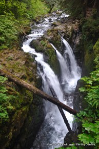 Sol Duc Falls, Olympic National Park.