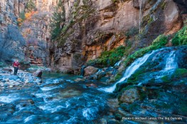 Big Springs in The Narrows, Zion National Park.