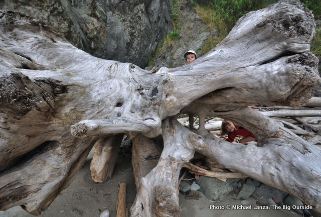 Young children with a piece of driftwood on the Olympic coast.