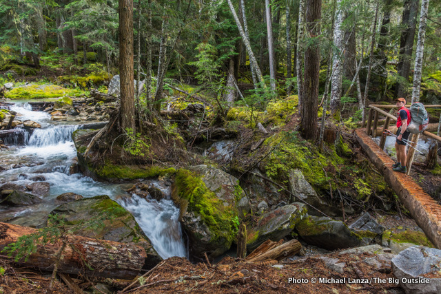 Fisher Creek Trail, North Cascades National Park.