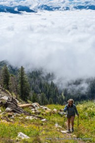 """The unofficial """"trail"""" to Thompson Peak."""