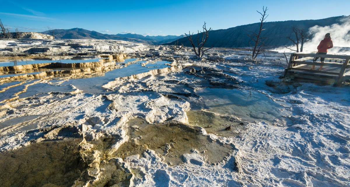 Why Everyone Should Visit Yellowstone