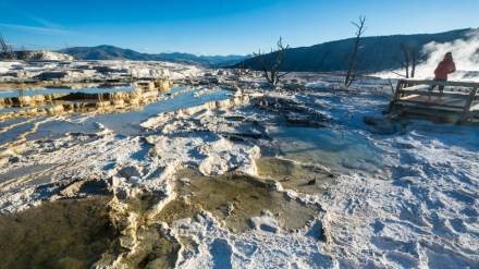 Photo Gallery: Yellowstone in Autumn