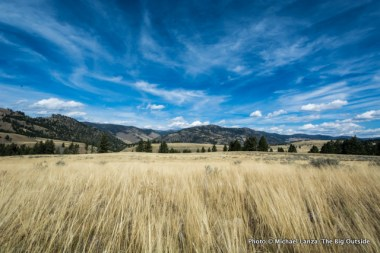 Along Blacktail Deer Creek Trail, Yellowstone.