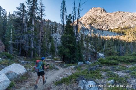 Along the PCT south of Benson Lake, Yosemite.