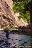 Day three backpacking Paria Canyon.