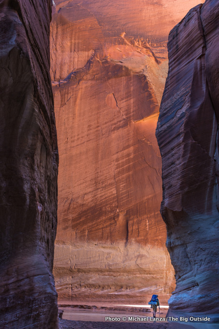 A backpacker in the Paria Canyon narrows.